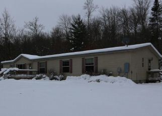 Foreclosed Home in Kinross 49752 S DEER RUN RD - Property ID: 4328278170