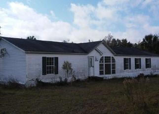Foreclosed Home in Crystal River 34428 W PAINT CT - Property ID: 4328512946