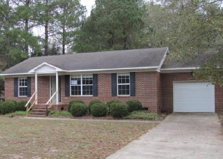 Foreclosed Home in Deep Run 28525 TULLS MILL RD - Property ID: 4328884782