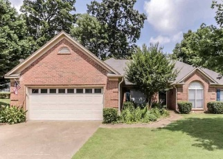 Foreclosed Home in Memphis 38135 HEDGEWOOD LN - Property ID: 4329943355