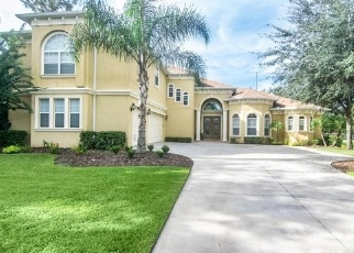 Foreclosed Home in Lithia 33547 WILD ORCHID DR - Property ID: 4330961202