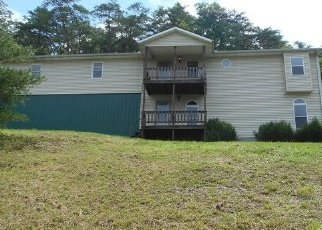 Foreclosed Home in Chesapeake 45619 STATE ROUTE 378 - Property ID: 4333350351