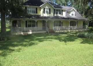 Foreclosed Home in Brooksville 34601 FREDERICK DR - Property ID: 4337278549