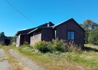 Foreclosed Home in Canaseraga 14822 NEWTON RD - Property ID: 4338100180