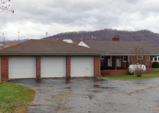 Foreclosed Home in Lovingston 22949 THOMAS NELSON HWY - Property ID: 4339691341
