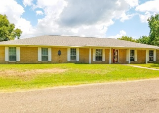 Foreclosed Home in Livingston 77351 BLUFF DR - Property ID: 4340277801