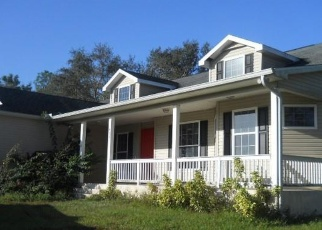 Foreclosed Home in Labelle 33935 S SWINGING TRL - Property ID: 4341127910