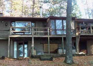 Foreclosed Home in Rhinelander 54501 TRAILS END LOOP - Property ID: 4343254257