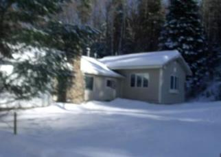 Foreclosed Home in Long Lake 12847 N POINT RD - Property ID: 4344115767