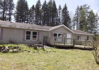 Foreclosed Home in Boyne Falls 49713 SKOP RD - Property ID: 4344276498