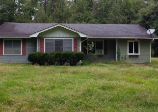 Foreclosed Home in Buna 77612 COUNTY ROAD 777 - Property ID: 4347145222
