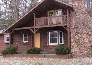 Foreclosed Home in Lapeer 48446 FARNSWORTH RD - Property ID: 4347988322