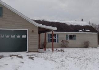 Foreclosed Home in Boyne Falls 49713 THUMB LAKE RD - Property ID: 4348019870