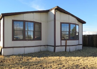 Foreclosed Home in Carson City 89701 SPARTAN AVE - Property ID: 4348589670