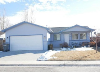 Foreclosed Home in Silt 81652 W RICHARDS AVE - Property ID: 4350969167