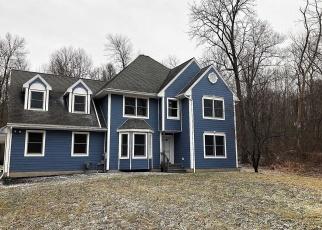Foreclosed Home in Fishkill 12524 REGA RD - Property ID: 4351671694