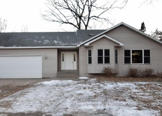 Foreclosed Home in Minneapolis 55449 HASTINGS ST NE - Property ID: 4358240419