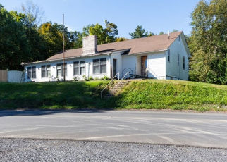Foreclosed Home in Wallkill 12589 BRUYN TPKE - Property ID: 4361361874