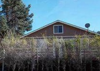 Foreclosed Home in Frazier Park 93225 LAKEVIEW DR - Property ID: 4362368324
