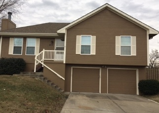 Foreclosed Home in Kearney 64060 E 15TH ST - Property ID: 4364052330