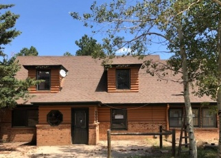 Foreclosed Home in Nederland 80466 MAGNOLIA DR - Property ID: 4366503232