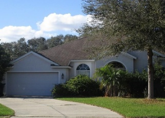 Foreclosed Home in Valrico 33594 ACORN LEAF CT - Property ID: 4368275275