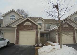 Foreclosed Home in Elgin 60120 WOODHILL CT - Property ID: 4370051709