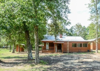 Foreclosed Home in Plantersville 77363 CLARK RD - Property ID: 4373795507