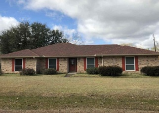 Foreclosed Home in Lumberton 77657 ALADDIN DR - Property ID: 4373796829