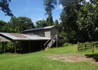 Foreclosed Home in Woodville 75979 COUNTY ROAD 4130 - Property ID: 4375861426