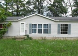 Foreclosed Home in Ravenna 44266 HOPKINSON AVE - Property ID: 4375950785