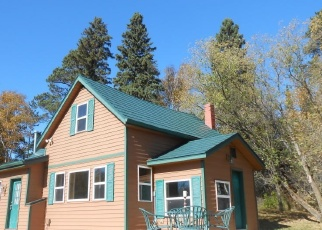 Foreclosed Home in Park Rapids 56470 MILLER DR - Property ID: 4376571384