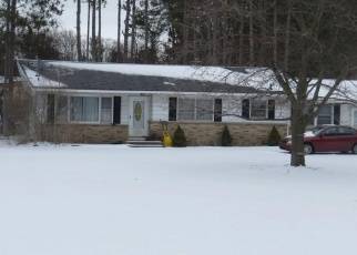 Foreclosed Home in Newaygo 49337 E 82ND ST - Property ID: 4376685700