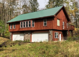 Foreclosed Home in Brooktondale 14817 E MILLER RD - Property ID: 4378052167