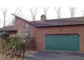 Foreclosed Home in Palmyra 22963 COLONIAL RD - Property ID: 4378222994