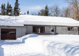 Foreclosed Home in Land O Lakes 54540 LITTLE PORTAGE LAKE RD - Property ID: 4379714732