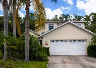 Foreclosed Home in Odessa 33556 WENTWORTH WAY - Property ID: 4381554206