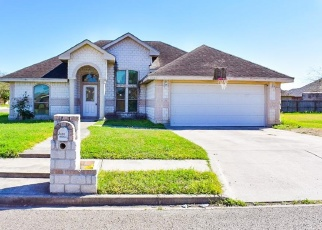 Foreclosed Home in Weslaco 78599 CASCADE DR - Property ID: 4383192684