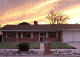 Foreclosed Home in El Paso 79912 RIO VERDE DR - Property ID: 4384701948