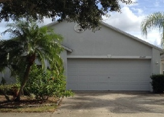 Foreclosed Home in Riverview 33579 OPUS DR - Property ID: 4385051433