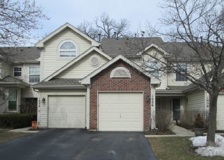 Foreclosed Home in Elgin 60120 WOODHILL CT - Property ID: 4385291445