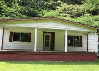 Foreclosed Home in Phelps 41553 BEECH CRK - Property ID: 4388719468