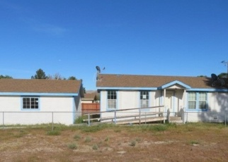 Foreclosed Home in Jacumba 91934 CALEXICO AVE - Property ID: 4389724172