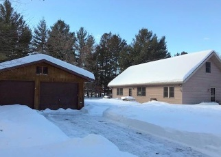 Foreclosed Home in Grantsburg 54840 E BENSON AVE - Property ID: 4390325968