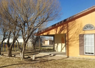 Foreclosed Home in Tornillo 79853 CIELO DR - Property ID: 4390532241