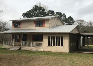 Foreclosed Home in Center 75935 COUNTY ROAD 1180 - Property ID: 4390548898