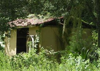 Foreclosed Home in Ocala 34481 SW 162ND TER - Property ID: 4392144873