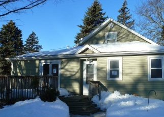 Foreclosed Home in Darwin 55324 S 1ST ST - Property ID: 4394032531
