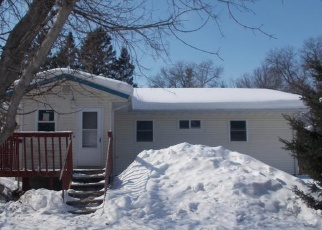 Foreclosed Home in Sebeka 56477 181ST AVE - Property ID: 4394045674