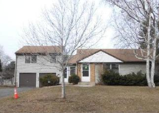 Foreclosed Home in Minneapolis 55423 STEVENS AVE - Property ID: 4395036813